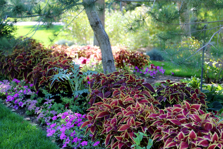 Thanksgiving Point Gardens - Stratton & Brätt Landscaping